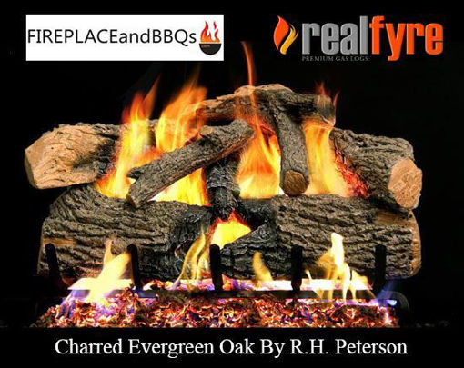"Picture of 18"" Charred Evergreen Oak"