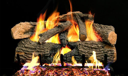 Picture of Donna Daniel Payment Gas Logs (1/2)