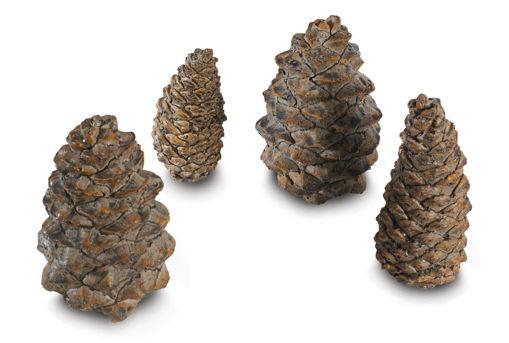 Picture of 4 Designer Pine Cones